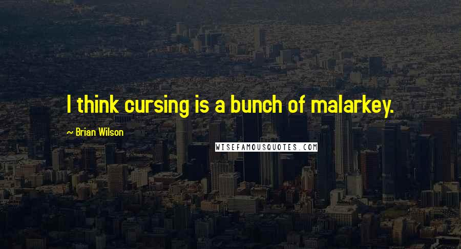 Brian Wilson quotes: I think cursing is a bunch of malarkey.