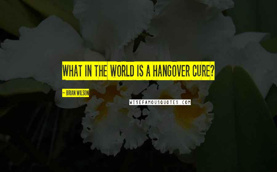 Brian Wilson quotes: What in the world is a hangover cure?