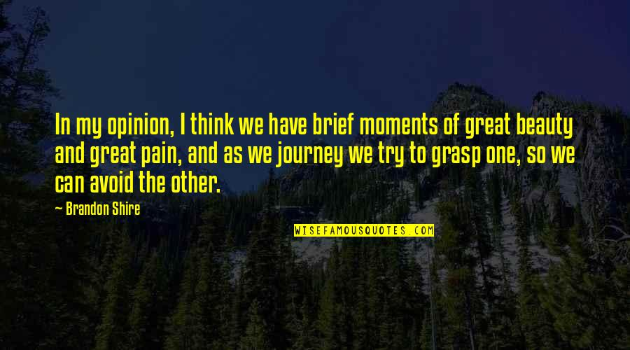 Brief Moments Quotes By Brandon Shire: In my opinion, I think we have brief
