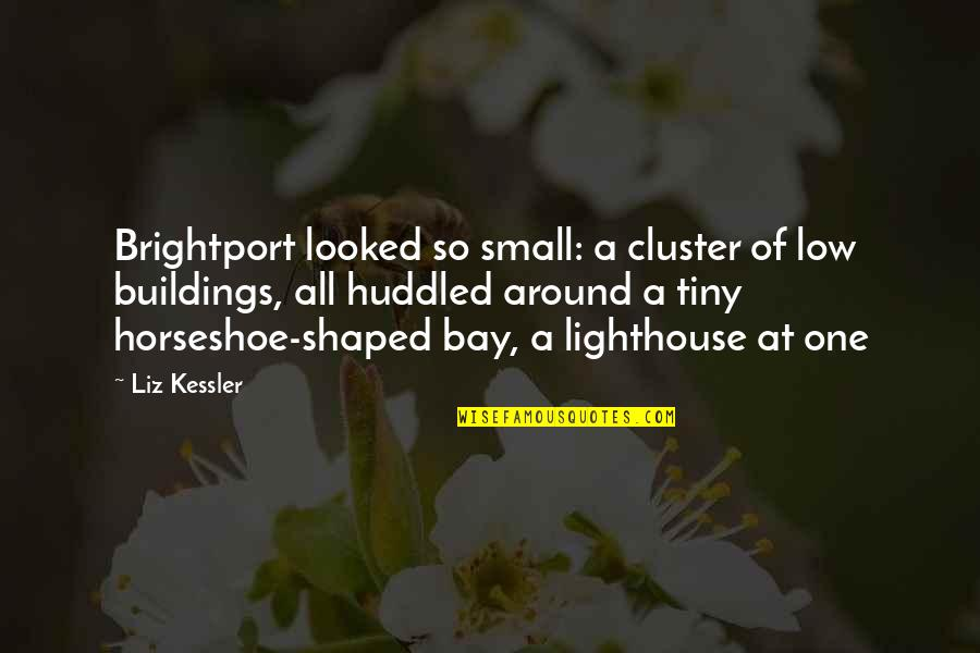 Brightport Quotes By Liz Kessler: Brightport looked so small: a cluster of low