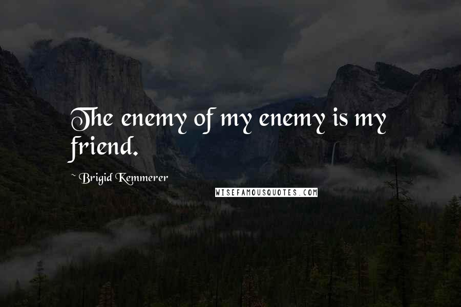 Brigid Kemmerer quotes: The enemy of my enemy is my friend.