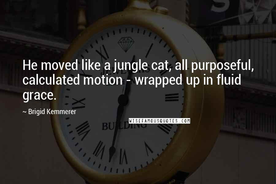 Brigid Kemmerer quotes: He moved like a jungle cat, all purposeful, calculated motion - wrapped up in fluid grace.