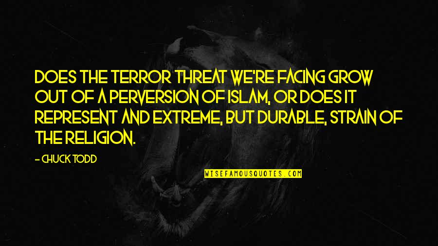 Brihadeeswara Temple Quotes By Chuck Todd: Does the terror threat we're facing grow out