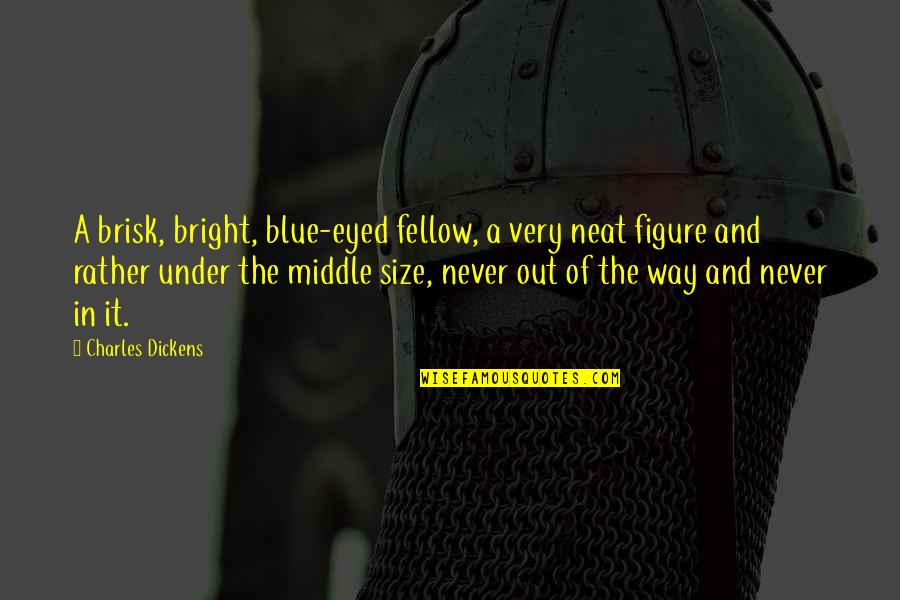 Brisk Quotes By Charles Dickens: A brisk, bright, blue-eyed fellow, a very neat