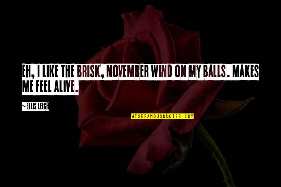 Brisk Quotes By Ellis Leigh: Eh, I like the brisk, November wind on