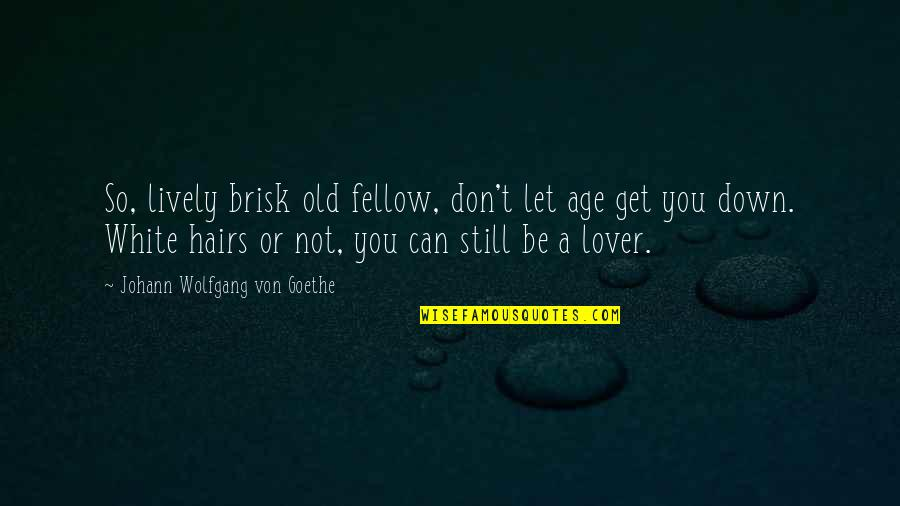 Brisk Quotes By Johann Wolfgang Von Goethe: So, lively brisk old fellow, don't let age
