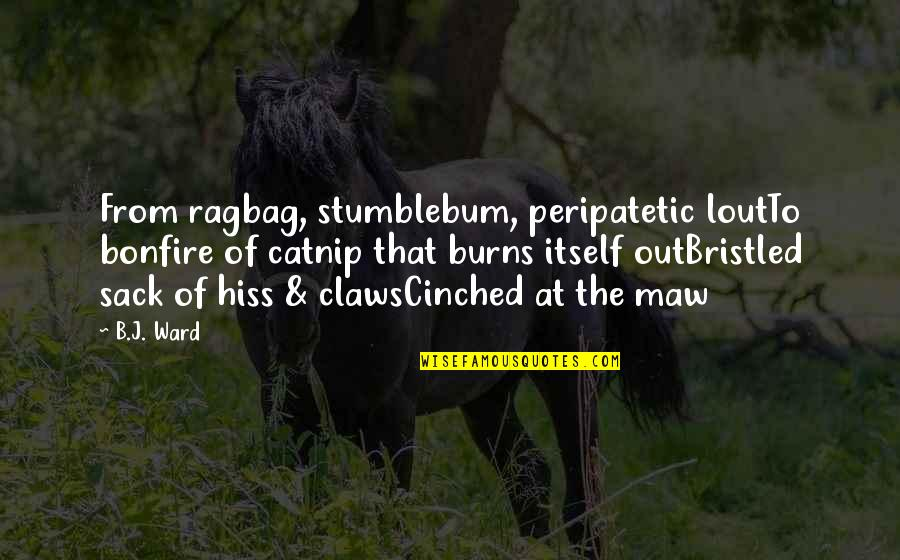 Bristled Quotes By B.J. Ward: From ragbag, stumblebum, peripatetic loutTo bonfire of catnip