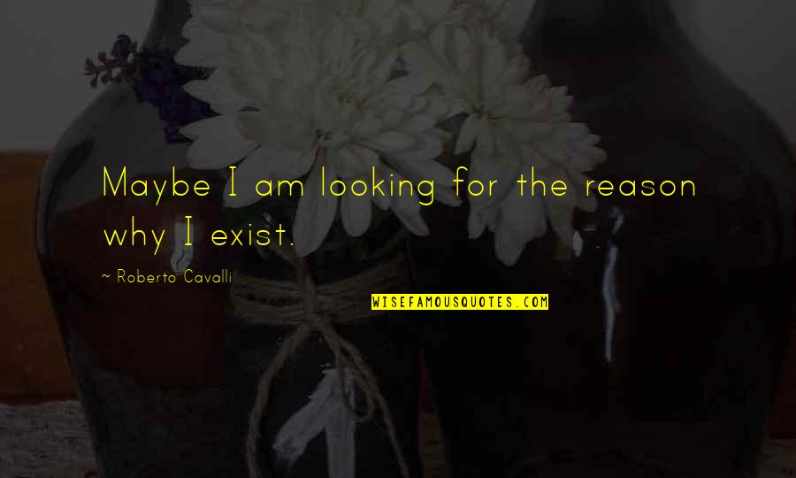 Brittany Josephina Quotes By Roberto Cavalli: Maybe I am looking for the reason why
