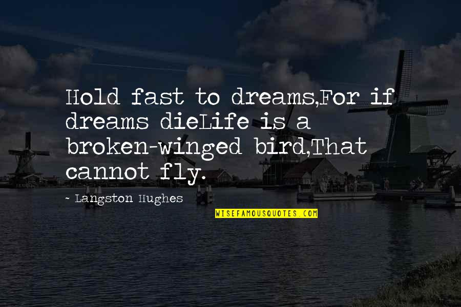 Broken Dreams Quotes By Langston Hughes: Hold fast to dreams,For if dreams dieLife is