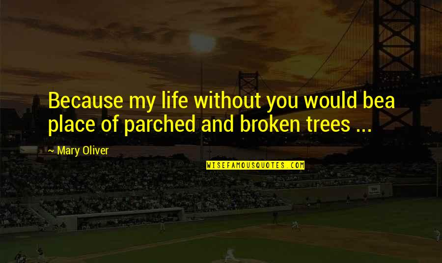 Broken Love Quotes By Mary Oliver: Because my life without you would bea place