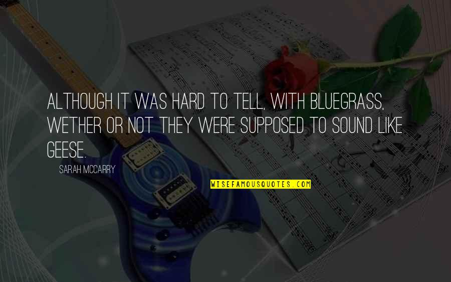 Broken Trust In Marriage Quotes By Sarah McCarry: Although it was hard to tell, with bluegrass,