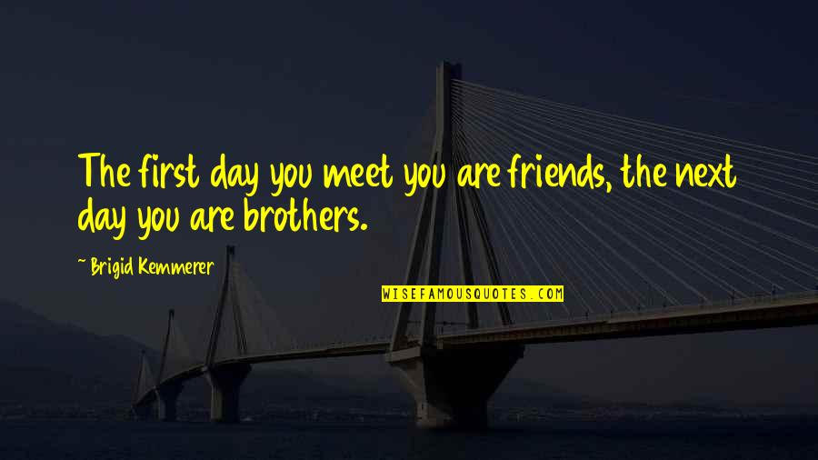 Brothers And Best Friends Quotes By Brigid Kemmerer: The first day you meet you are friends,