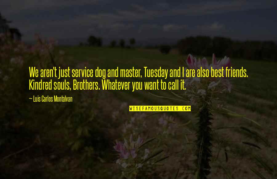 Brothers And Best Friends Quotes By Luis Carlos Montalvan: We aren't just service dog and master, Tuesday