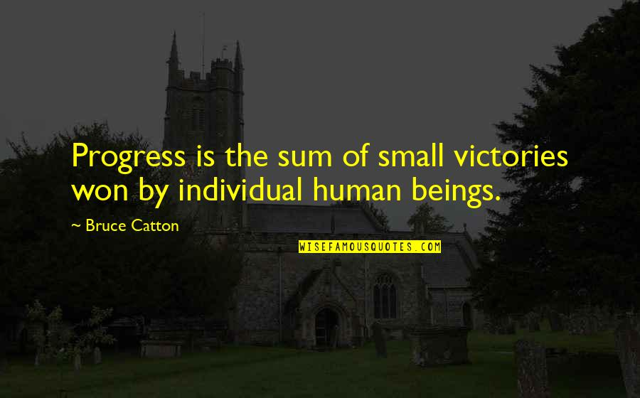 Bruce Catton Quotes By Bruce Catton: Progress is the sum of small victories won