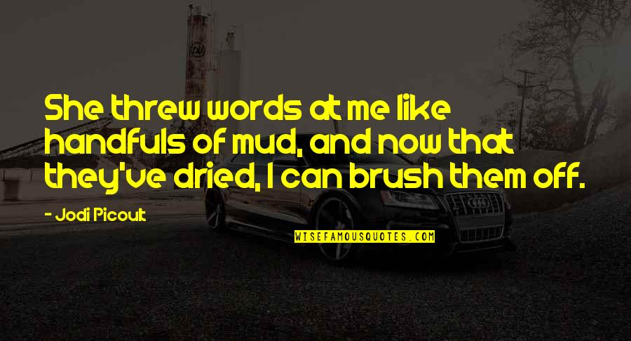 Brush Me Off Quotes By Jodi Picoult: She threw words at me like handfuls of