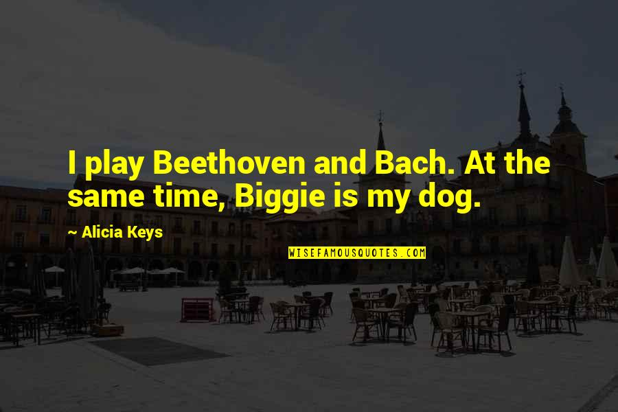 Brutus Being A Villain Quotes By Alicia Keys: I play Beethoven and Bach. At the same
