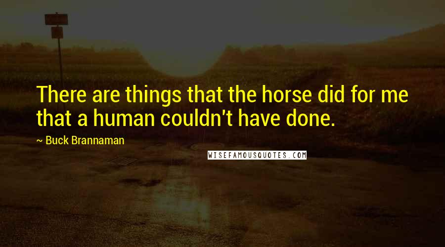 Buck Brannaman quotes: There are things that the horse did for me that a human couldn't have done.
