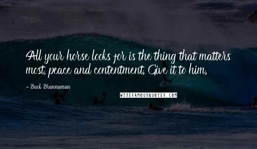Buck Brannaman quotes: All your horse looks for is the thing that matters most, peace and contentment. Give it to him.