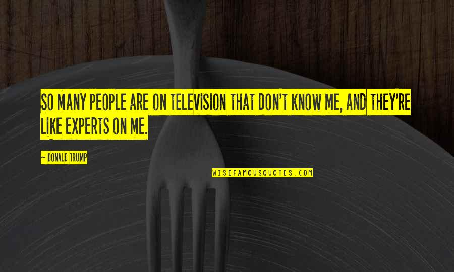 Bucketing Quotes By Donald Trump: So many people are on television that don't