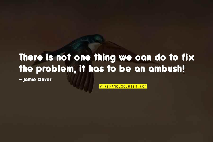 Buddhist Dhamma Quotes By Jamie Oliver: There is not one thing we can do