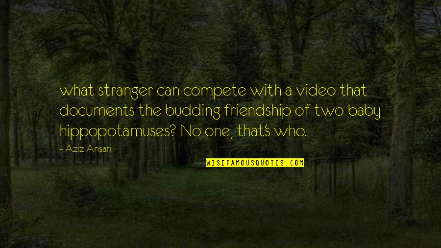 Budding Quotes By Aziz Ansari: what stranger can compete with a video that
