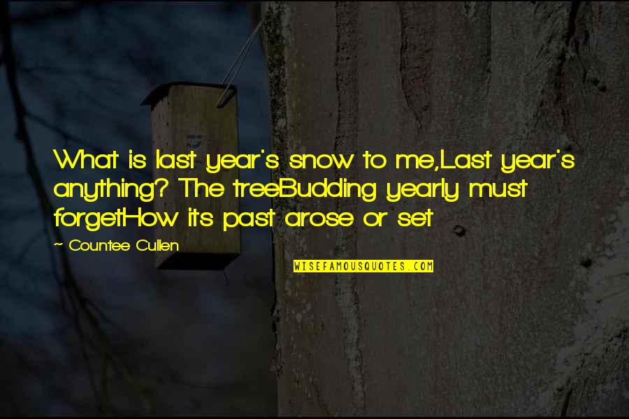 Budding Quotes By Countee Cullen: What is last year's snow to me,Last year's