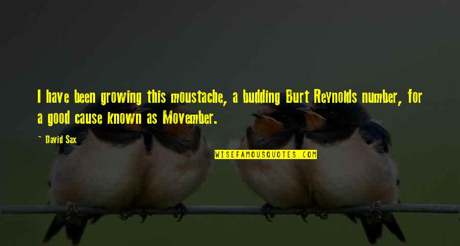 Budding Quotes By David Sax: I have been growing this moustache, a budding