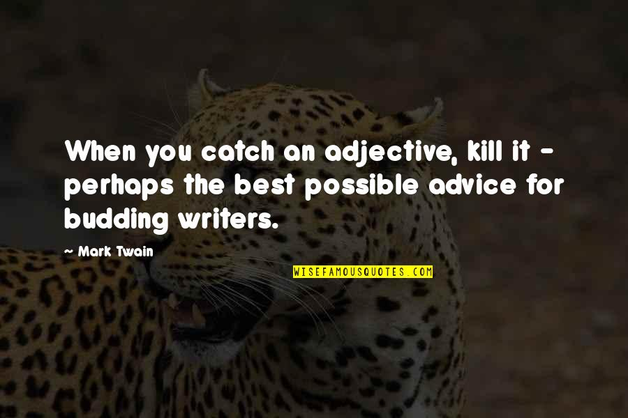 Budding Quotes By Mark Twain: When you catch an adjective, kill it -