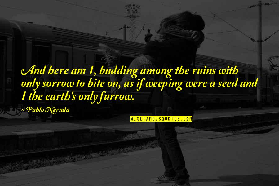 Budding Quotes By Pablo Neruda: And here am I, budding among the ruins