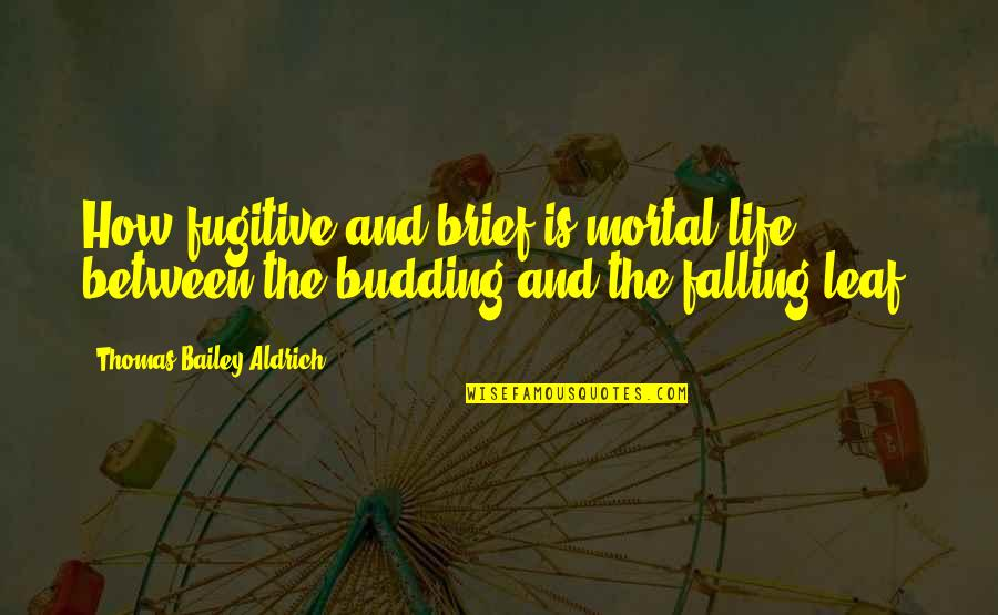 Budding Quotes By Thomas Bailey Aldrich: How fugitive and brief is mortal life between