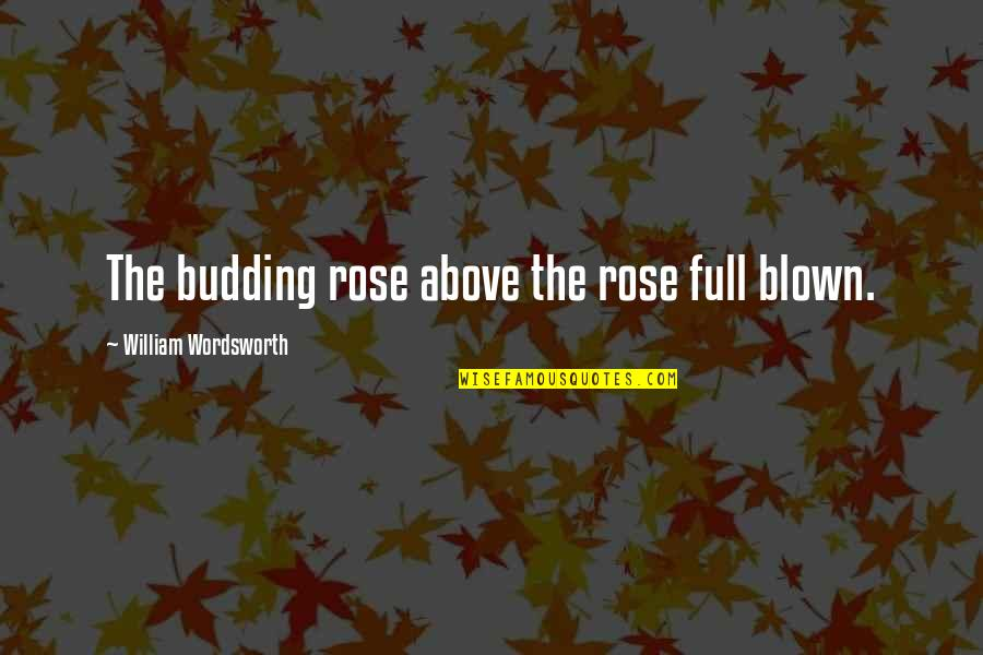 Budding Quotes By William Wordsworth: The budding rose above the rose full blown.