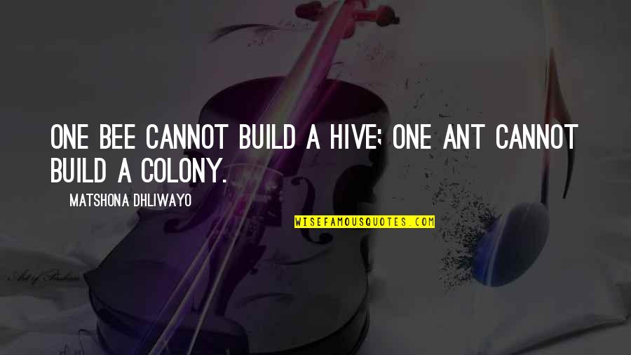 Build Nation Quotes By Matshona Dhliwayo: One bee cannot build a hive; one ant
