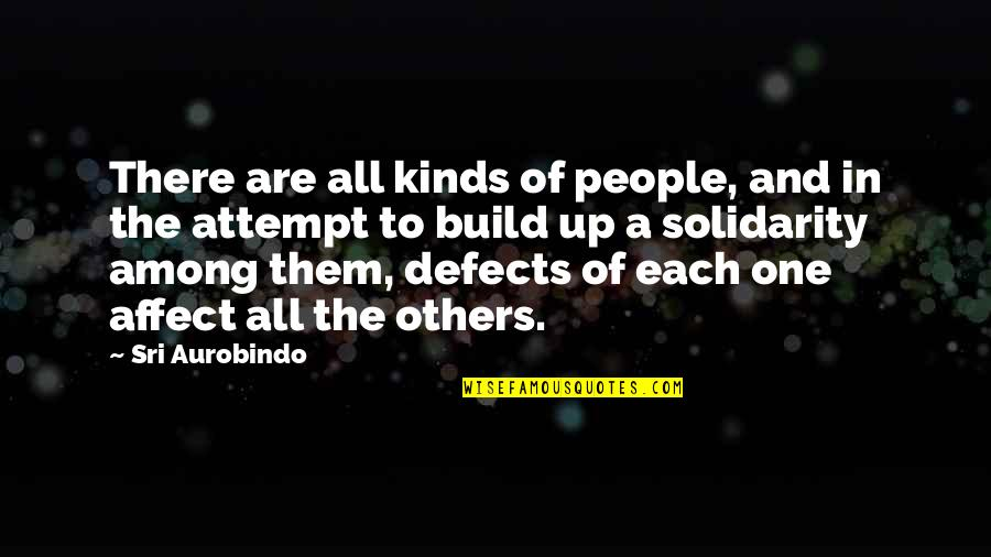 Build Them Up Quotes By Sri Aurobindo: There are all kinds of people, and in