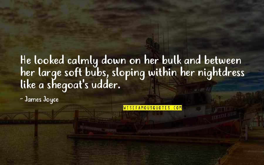Bulk Quotes By James Joyce: He looked calmly down on her bulk and