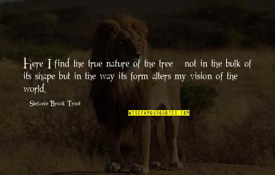 Bulk Quotes By Stefanie Brook Trout: Here I find the true nature of the
