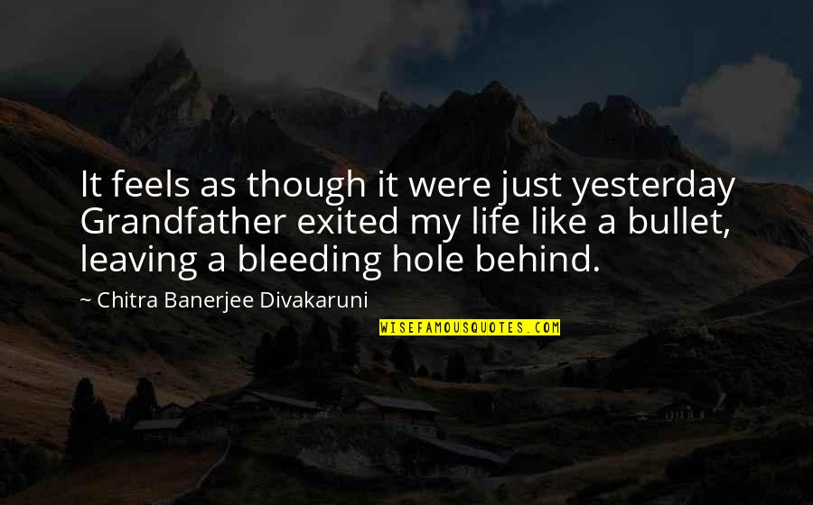 Bullet Quotes By Chitra Banerjee Divakaruni: It feels as though it were just yesterday