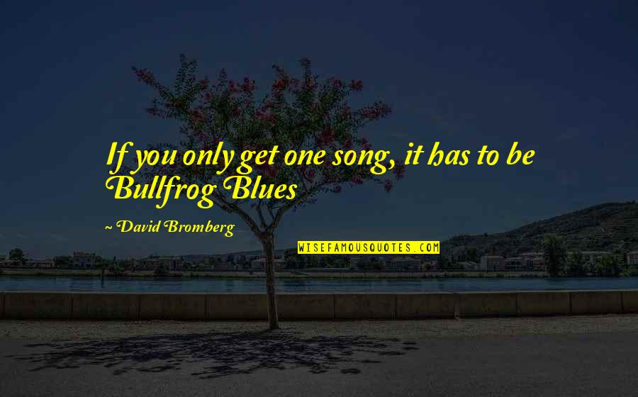 Bullfrog's Quotes By David Bromberg: If you only get one song, it has