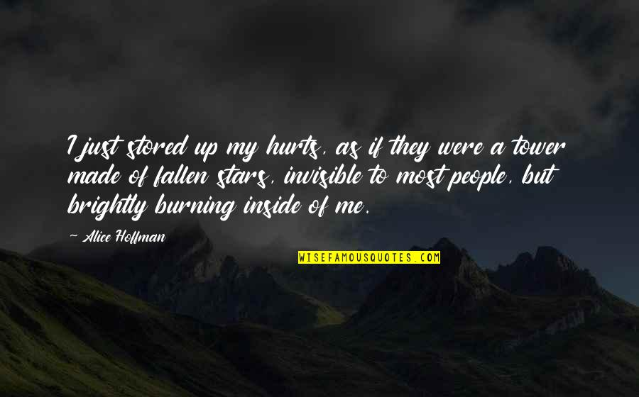 Burning Brightly Quotes By Alice Hoffman: I just stored up my hurts, as if