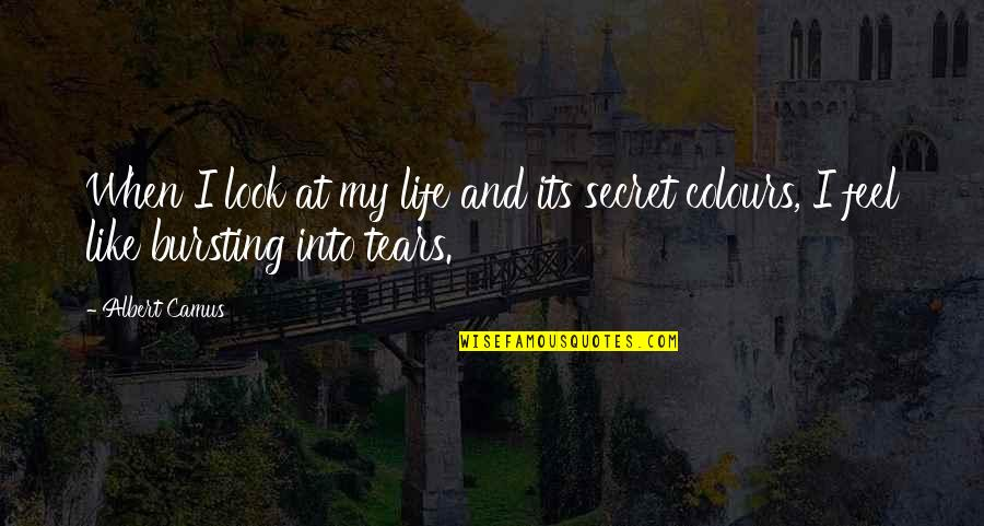 Bursting Into Tears Quotes By Albert Camus: When I look at my life and its