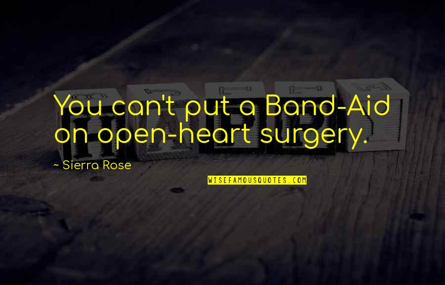 Business Administration Students Quotes By Sierra Rose: You can't put a Band-Aid on open-heart surgery.