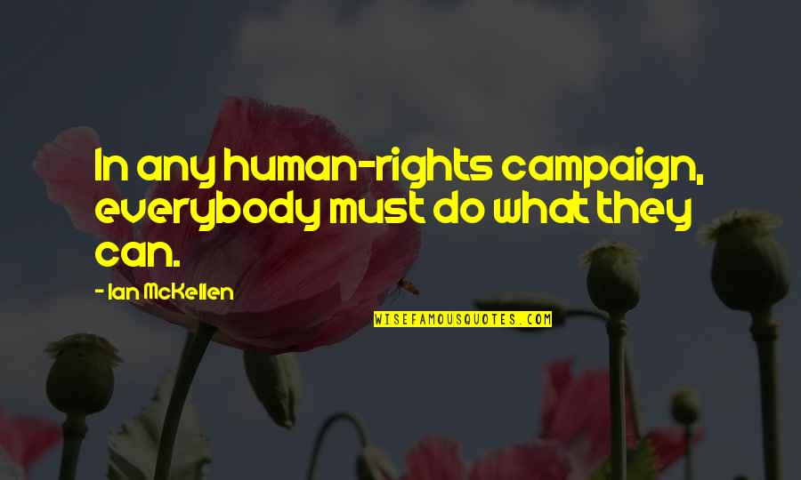 Bustopher Quotes By Ian McKellen: In any human-rights campaign, everybody must do what