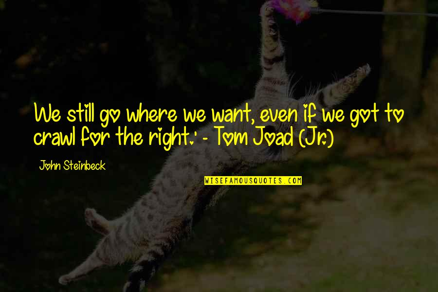 C.e.m. Joad Quotes By John Steinbeck: We still go where we want, even if