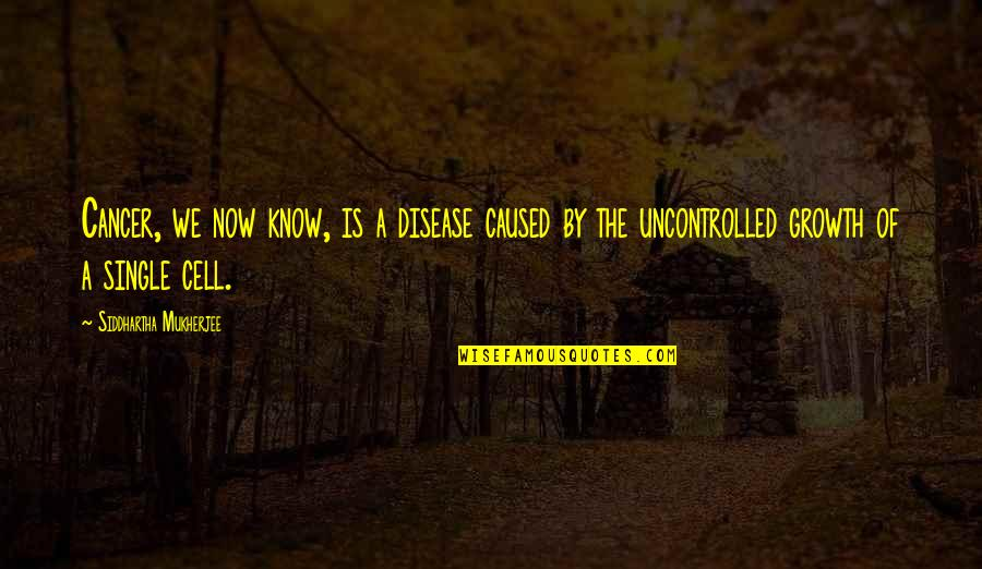C Single Quotes By Siddhartha Mukherjee: Cancer, we now know, is a disease caused