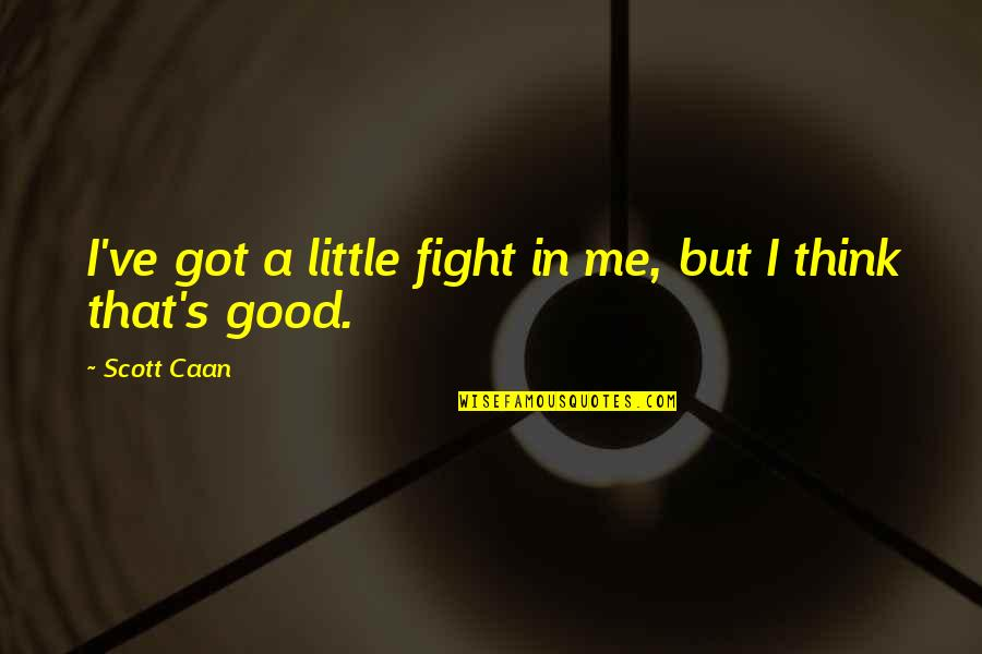 Caan Quotes By Scott Caan: I've got a little fight in me, but