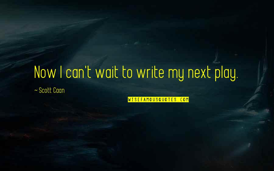 Caan Quotes By Scott Caan: Now I can't wait to write my next