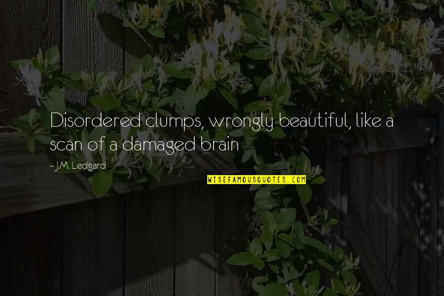 Cacography Quotes By J.M. Ledgard: Disordered clumps, wrongly beautiful, like a scan of