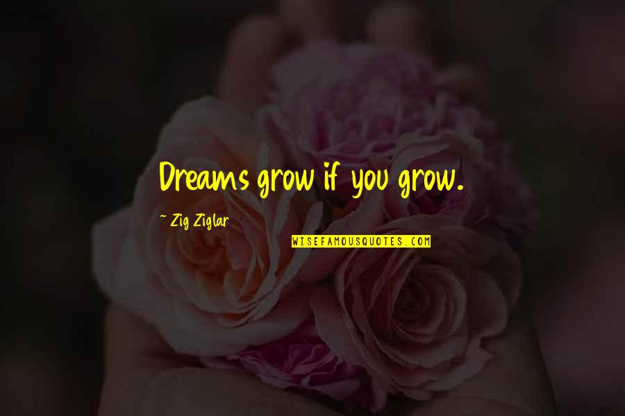 Cactus Bloom Quotes By Zig Ziglar: Dreams grow if you grow.