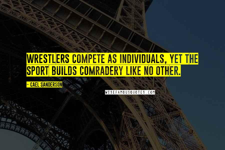 Cael Sanderson quotes: Wrestlers Compete as Individuals, Yet the Sport Builds Comradery Like No Other.