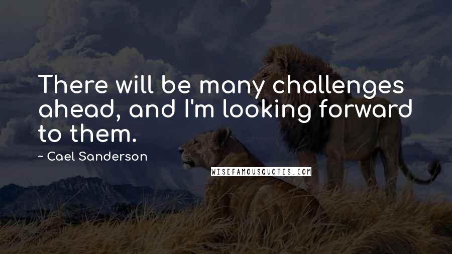 Cael Sanderson quotes: There will be many challenges ahead, and I'm looking forward to them.