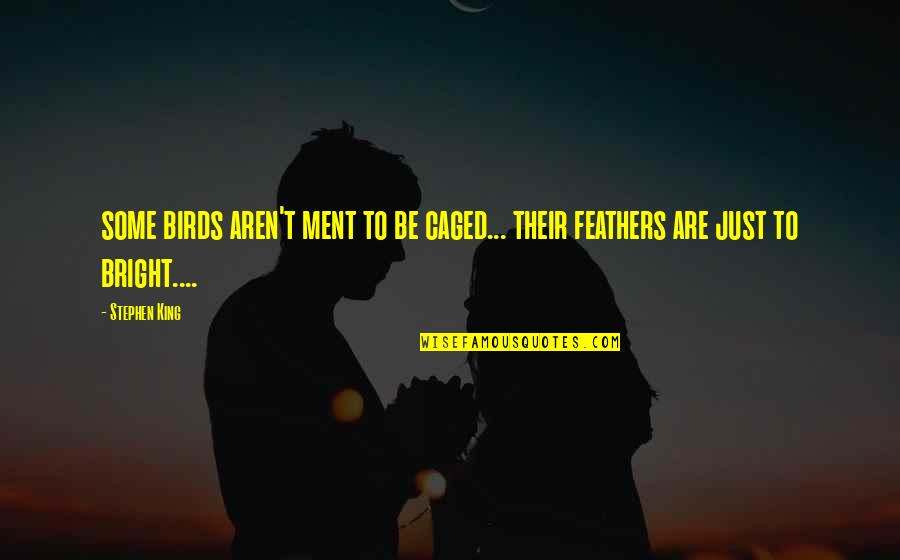 Caged Birds Quotes By Stephen King: some birds aren't ment to be caged... their